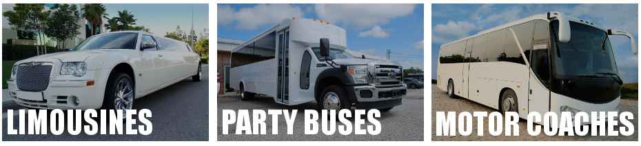 st petersburg limo party bus rental