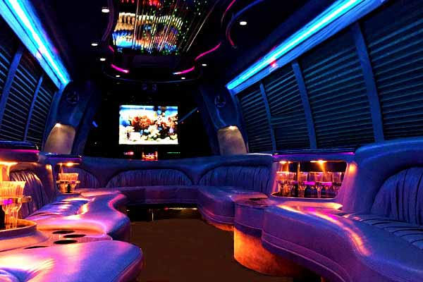 18 passenger party bus rental Brandon
