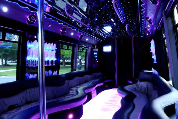 22 people party bus St. Petersburg
